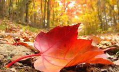 Почнува есента