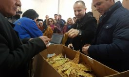 ФОТО:  Почна откупот на тутунот, родот квалитетен, се очекува повисока цена од ланската