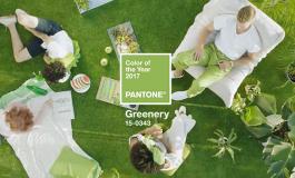 Бојата на 2017 година е светлозелената