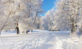 Во јануари годинава измерена најниската температура досега - 28 степени