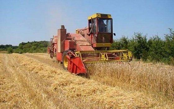 Директната поддршка создава мрзливи земјоделци